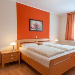 Zimmer Krokus_1